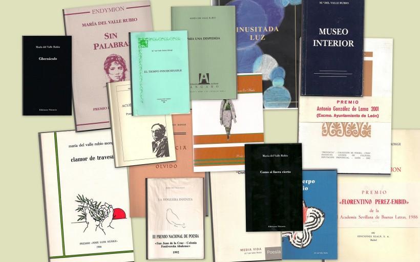 16 Libros.jpg